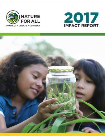 N4A 2017 Impact Report